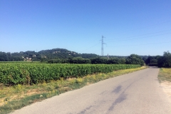 Lowlands of the Ardeche valley