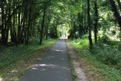 Outside of Sarlat-la-Canéda we picked up a cycle track down an old railway track which provided great shade